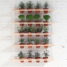 DIY Hanging Garden with Complete Tutorial!   HomeMade Modern