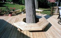 Bench built around a tree on a deck