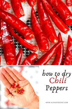 Thai Peppers, Types Of Peppers, How To Make Chili, Homemade Chili, One Pot Pasta, Dehydrated Food, Dehydrator Recipes, Leftovers Recipes, Meals In A Jar