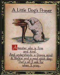 When doggies pray