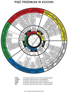 5 przemian Chinese Medicine, Tai Chi, Chart