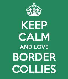 Border #collie quote #dogquotes