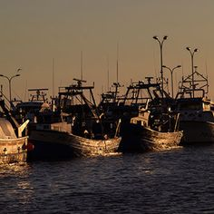 Fishing port of Sant Carles de la Rapita. #boats #port #landscape #sea #fishing @montsiartv