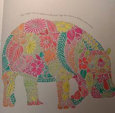 Millie Marottas Animal Kingdom Hippo Adultcolouring Milliemarotta Animalkingdom