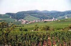 Route du Vin Alsace France