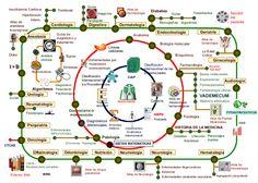 MAPA DE MEDCICLOPEDIA