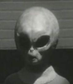 area 51 alien pictures   Area 51: Das Alien Interview