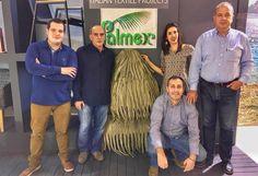 Προϊόντα με συνθετικό thatch εξαιρετικής ποιότητας! Ρίξτε μια ματιά στους συνεργάτες μας  👉 Palmex Skepes Greece