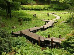 Summer in Hokkaido/北海道, Japan Bog Garden, Japan Garden, Meadow Garden, Shade Garden, Garden Paths, Garden Bridge, Garden Landscaping, Landscape Architecture, Landscape Design