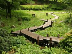 Perfect meandering pathway