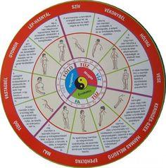 szervóra Health And Nutrition, Health Fitness, Face Massage, Qigong, Acupressure, Health Education, Massage Therapy, Alternative Medicine, Health And Beauty