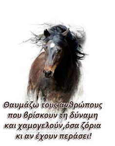 Greek Quotes, Wise Words, Best Quotes, Horses, Sayings, Nice Things, Angel, Letters, Thoughts