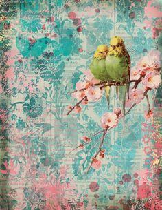 Shabby Chic Garden, Vintage Shabby Chic, Junk Journal, Garden Birds, Printable Vintage, Printables, Scrapbook Kit, Digital, Journals