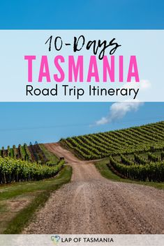 10 days in Tasmania? Roadtrip Australia, Australia Travel Guide, Visit Australia, Tasmania Road Trip, Tasmania Travel, Australia Holidays, Australian Road Trip, Caravan Holiday, Trip Planning