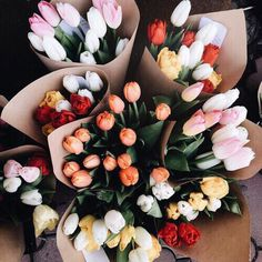 Find images and videos about flowers, bouquet and tulips on We Heart It - the app to get lost in what you love. My Flower, Beautiful Flowers, Fresh Flowers, Bunch Of Flowers, Plantas Indoor, Plants Are Friends, Flower Aesthetic, Spring Aesthetic, Planting Flowers