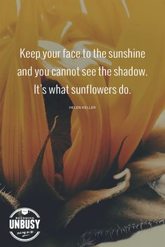 Business Quotes : QUOTATION – Image : Description Keep your face to the sunshine and you cannot see the shadow. It's what the sunflowers do. – Helen Keller *love this article and this site! Girly Quotes, Mom Quotes, Best Quotes, Favorite Quotes, Sunflower Quotes, Sunflower Canvas, Sunflower Pictures, Finding Yourself Quotes, Sunshine Quotes