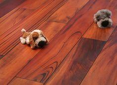 Exotické dřeviny vynikají svou tvrdostí a odolností. Exotické dřevo nacházíme v pestré škále barevných odstínů. Surové dřevo není potřeba dodatečně upravovat speciálními tónovacími oleji, tak jak se to běžné dělá u dubových podlah. I v surovém stavu je většina exotickým dřevin nádherně přírodně zbarvená. Zákazníci si je žádají, nejen pro svoji krásu, neobyčejnost, velké množství barevných odstínů , ale i pro jejich přijatelnou cenu http://podlahove-studio.com/88-exoticke-podlahy