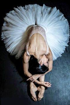 Elisa Carrillo Cabrera Elisa Carrillo and Friends 2017 Ballet Gala Photo © Carlos Quezada Ballerina Workout, Ballerina Body, Ballerina Diet, Ballet Body, Ballerina Poses, Ballerina Project, Art Ballet, Ballet Dancers, Ballerinas