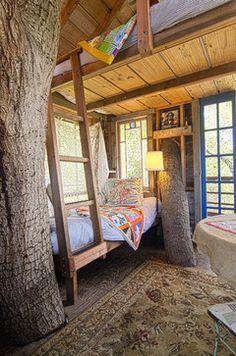 Treehouse ideas for inside