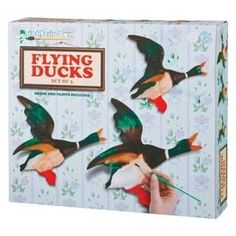 Paint your own flying ducks.
