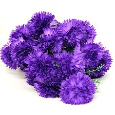"Large 22"" Carnation Silk Flower Bunch (19 Flowers) (Purple) AtoZ Online LLC http://www.amazon.com/dp/B00UIEGA48/ref=cm_sw_r_pi_dp_sC2.ub004F8NS"