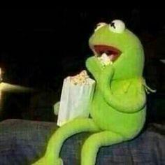 memes kermit the frog drinking tea / memes kermit ; memes kermit the frog ; memes kermit the frog hilarious ; memes kermit the frog drinking tea Memes Humor, New Memes, Funny Memes, Sapo Kermit, Reaction Pictures, Funny Pictures, Sapo Meme, Kermit The Frog, Kermit Face