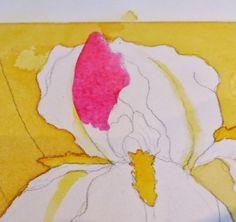 WATERCOLOR WORKSHOP: Painting Bearded Irises