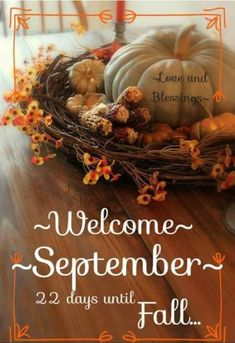September Quotes, Welcome September, Seasons Months, Months In A Year, New Month Greetings, Fall Words, Autumn Inspiration, Grapevine Wreath, Grape Vines