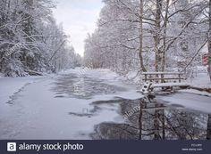 Frozen stream in snowy woods, Austria, Christmas, 1969 Stock Photo ...