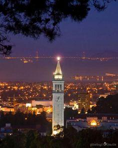 Coastline - Berkeley II