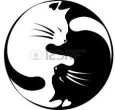Resultado de imagem para positivo y negativo arte con gatos