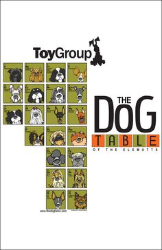 The Toy Group Poster of The Dog Table of the EleMUTTs features illustrations of the American Kennel Club dog breeds in the Toy Group. From the Affenpinscher to the Papillon to the Yorkshire Terrier, T Toy Fox Terriers, Bull Terrier Dog, Terrier Mix, Diy Cat Toys, Dog Toys, Pet Dogs, Dogs And Puppies, Doggies, Dog Table