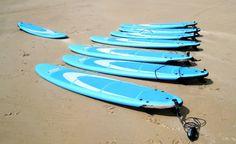 Prancha de surfe tem muitos impactos ambientais. Os primeiros modelos foram feitos com madeiras nativas das ilhas do Pacífico. Com sofisticação de materiais, degradação também aumentou: http://www.ecycle.com.br/component/content/article/35-atitude/1034-prancha-de-surfe-tem-muitos-impactos-ambientais.html