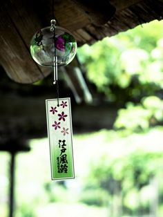 """japan-overload: """" typical summer (such as wind chime) by torne (where's my lens cap? Japanese Culture, Japanese Art, Japanese Colors, Image Japon, Japanese Wind Chimes, Japan Summer, Aesthetic Japan, Origami, Summer Photography"""