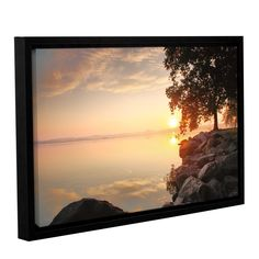 Renewal by Steve Ainsworth Floater Framed Photographic Print on Gallery Wrapped Canvas