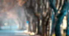 HD 4K Wallpapers For Mobile Trending On Pinterest 2020 Pink Glitter Wallpaper, Blue Flower Wallpaper, Green Wallpaper, 4k Wallpaper For Mobile, Live Wallpaper Iphone, Joker Wallpapers, Blue Wallpapers, Pink Floral Background, Ford Mustang Wallpaper