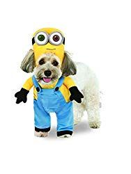 The Animated Minion Bob Arms Pet Costume is the best 2019 Halloween costume for you to get! Everyone will love thisDog and Cat costume that you picked up from Wholesale Halloween Costumes! Minion Dog Costume, Minion Halloween Costumes, Wholesale Halloween Costumes, Dog Halloween, Gru Costume, Pet Costumes For Dogs, Cat Costumes, Costume Ideas, Diy Minion Kostüm