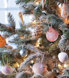 Sparkling Seashell Ornaments for your holiday tree! #fabulouslyfestive