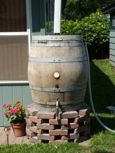 This is much cuter than those plastic rain barrels!
