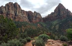 Zion National Park OC [3130x1836]
