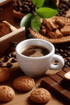 Nothing better than coffee, cookies and chocolate! Hot Coffee Image, I Love Coffee, My Coffee, Coffee Travel, Good Morning Coffee, Coffee Break, Mini Desserts, Bar Kunst, Café Chocolate