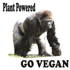 go vegan gorilla Silverback Gorilla, Going Vegan, Unique Gifts, Plants, Animals, Original Gifts, Animais, Animales, Animaux