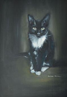 black cat oil on board Black Cat Art, South African Artists, Oil Paintings, Dog Cat, Batman, Graphic Design, Superhero, Cats, Board