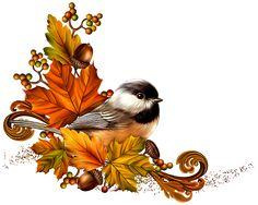 Sladká jeseň | SVET KLIP-ARTU