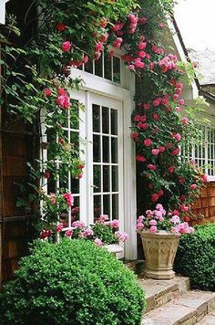 Climbing roses are one of the best ways to add both texture and height to your garden landscape. Garden Cottage, Rose Cottage, Home And Garden, Beautiful Gardens, Beautiful Flowers, Beautiful Pictures, Rose Garden Design, Climbing Roses, My Secret Garden