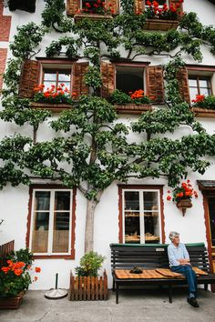Hallstatt- Austria -espaliered trees are very popular Places Around The World, Oh The Places You'll Go, Places To Travel, Places To Visit, Around The Worlds, Austria Destinations, Austria Travel, Travel Europe, Salzburg Austria