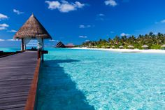 Not much better than Bora Bora #travel #borabora ask us for a quote to ANY island destination! request_info@nexttrip.com
