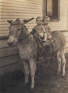 21 Delightful Vintage Photos Of Animals - Twin babes on a donkey - Vintage Children Photos, Vintage Twins, Vintage Dog, Vintage Pictures, Old Pictures, Vintage Images, Old Photos, Animal Pictures, Vintage Ladies