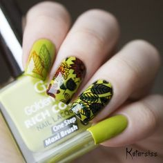 """321 Likes, 3 Comments - BornPrettyStore (@bornprettynail) on Instagram: """"Floral Rectangle Manicure Image Plate item ID: 38741 Photo is from @katarsiss $2.99 per…"""""""