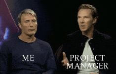 Me VS Project Manager. #TMfun